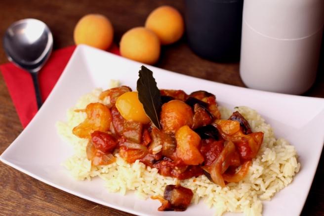 Orientalische Aprikosen-Tomaten-Soße (7)